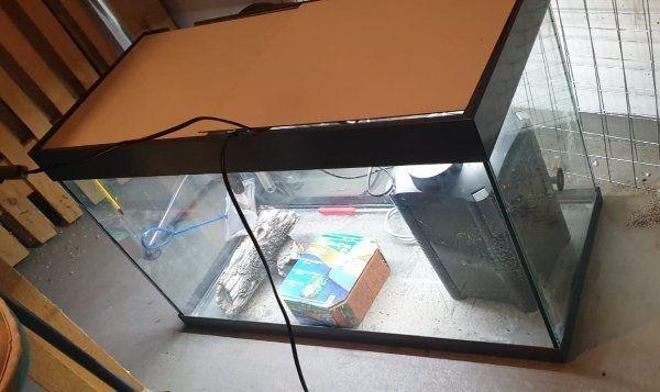 Aquarium 126 Liter mit Lampe