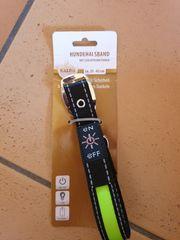 LED Hundehalsband 35cm-43cm NEU