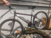 Mountainbike Jugend