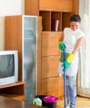 Wohnungsreinigung Haushaltshilfen Putzfrau Reinigungskräfte