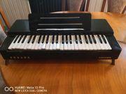 Hohner Organa Orgel