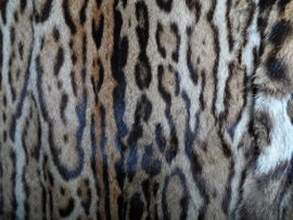 Sonstige Kleidung - Seltener Ozelot Pelzmantel mit Cite