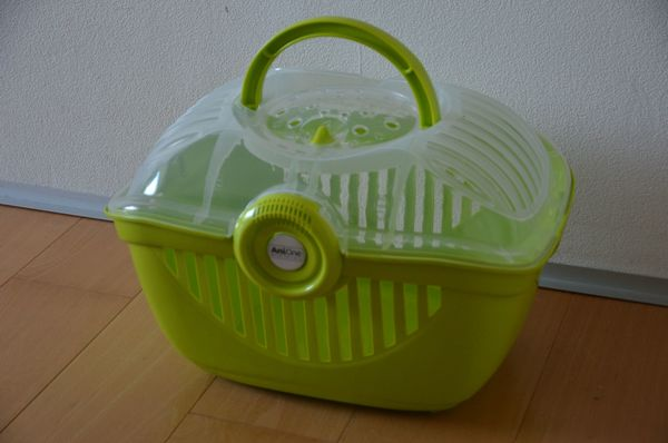 Transportbox AniOne grün transparent stabil