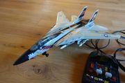 Großer Kampfjet F-14 Spielzeug EntrümpelungGöllheim