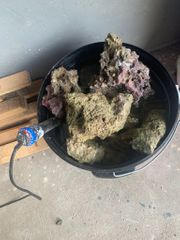 Meerwasser Lebendgestein 40 kg
