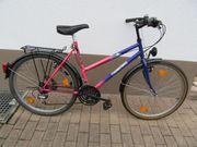 Damen Trekkingrad Thunderbird 28 Markenrad