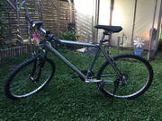 Mountain Bike von Triax