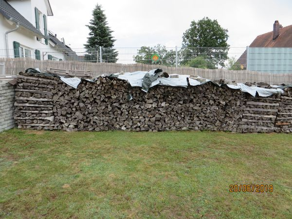 Brennholz Wippsäge