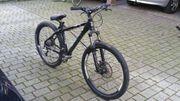 Centurion Mountain Dirtbike