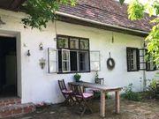 Suche Bauernhof Bauernhaus Offenstall Wiese