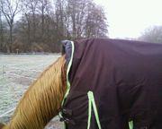 Pferde Regendecke Fedimax Information