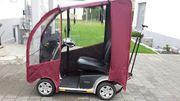 Elektromobil mit Wetterdach