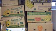 20 Bananenkartons Umzugskartons