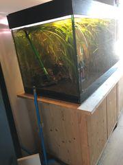 Aquarium mit allem was dazu