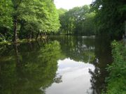 Suche Teich oder kleinen See