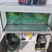 Aquarium 240L grau Eheim