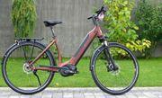 e-bike manufaktur 8CHT Continental Revolution