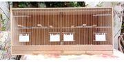 Vogel-Zuchtkäfig aus Holz