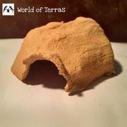 Reptilienhöhle mit Vorsprung M