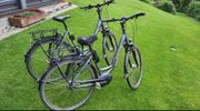 2E-Bike Trekking Damen CARVER Verkaufen