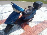 Rexy Rex Roller zu Verkaufen