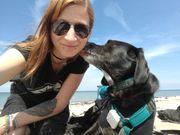 Leitende Angestellte mit Hund sucht