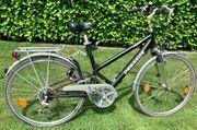 Fahrrad Damenrad der Marke Pegasus
