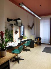 Übernahme Nachfolge Friseur Friseurgeschäft Friseursalon