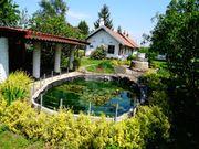 Idyllisches Doppel-Ferienhaus in Ungarn 3