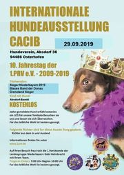 29 09 2019 - Internationale Hundeausstellung