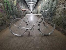 singlespeed fahrrad - Sport & Fitness - Sportartikel gebraucht