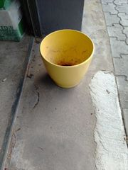 Blumen Topf groß gelb Keramik