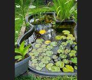 Teich - Teichbecken 800 Liter