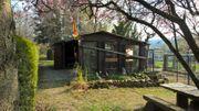 Liebevoll gepflegtes Gartengrundstück mit Gartenhütte