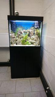 Aquarium - Juwel Lido 200 schwarz