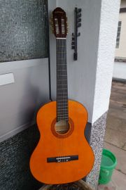 C Giant Gitarre mit Hülle