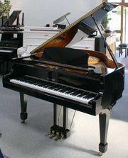 Flügel Klavier Weinberg G-80A schwarz