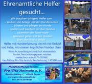 Tierschutzverein in 45309 Essen sucht