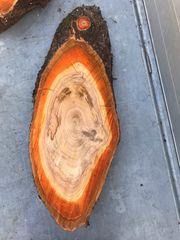 XXL-Holzscheibe DIY-Tisch Baumscheibe Holz Kirschbaum