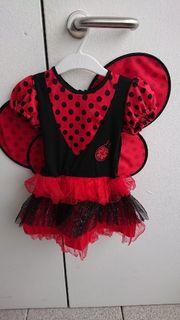 Marienkäfer Kostüm Gr 92