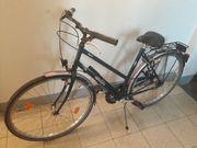 Herren Damen Fahrrad