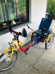 Draisin Relax E-Bike Therapierad