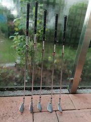 5 Golfschläger REGAL Classic Oversize