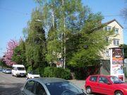 Fellbach Osten von Stuttgart Westen