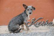 Werden Sie mit Keisha eine