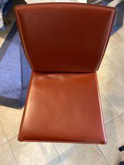 Leder Stühle von Bontempi