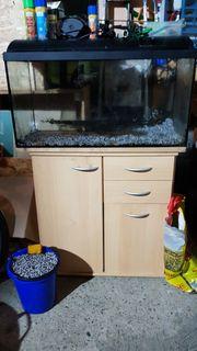 100 Liter Aquarium mit Unterschrank