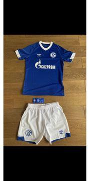 Schalke Trikot Hose Gr 152