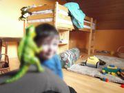 Kinder-Etagenbett mit Schreibtisch