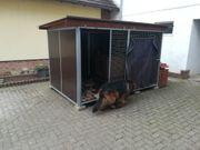 Hundezwinger inkl Hundehütte 3Jahre alt